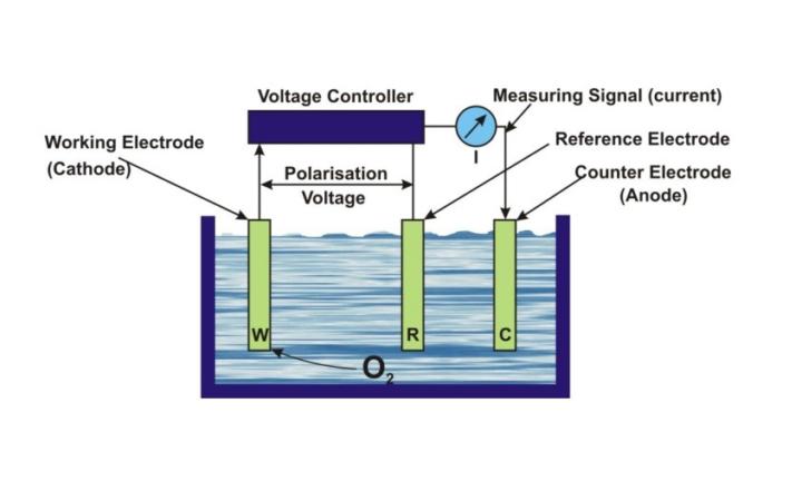 Polarographic do sensor diagram